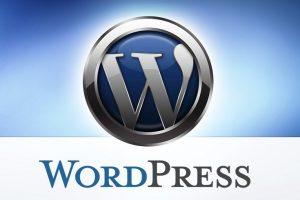 Wordpress-seo-tanitim-kurumsal-siteler